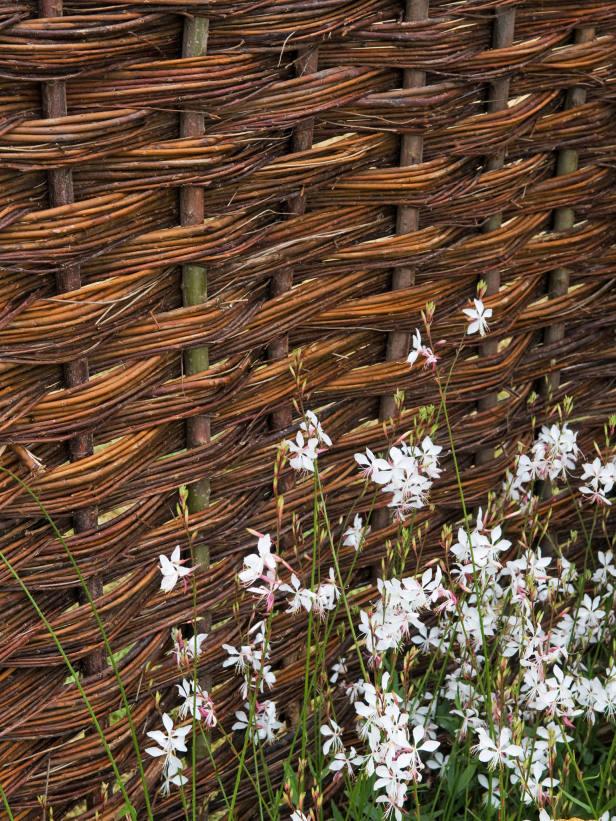Είδη για φράχτες Κήπου5