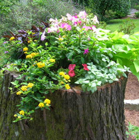 ιδέες με κορμούς δέντρου στον κήπο4