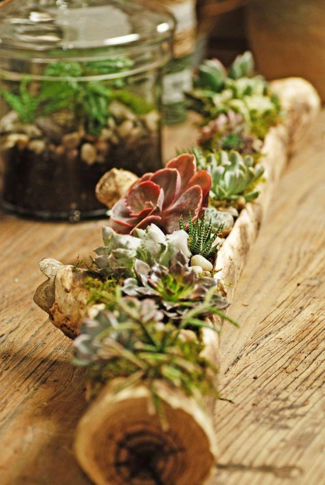 Ιδέες Εσωτερικής διακόσμησης με φυτά15