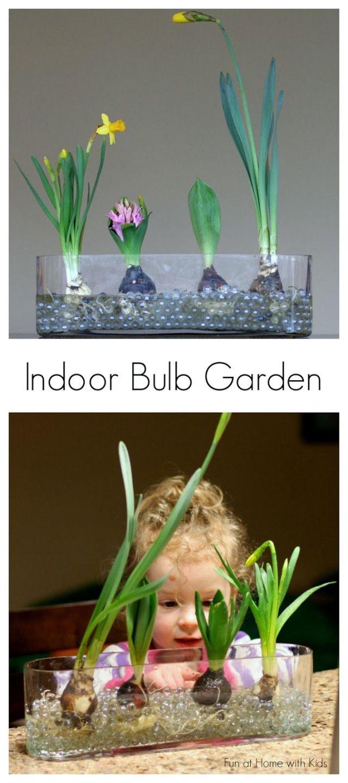 Ιδέες Εσωτερικής διακόσμησης με φυτά8