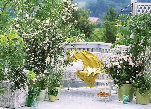 Μπαλκόνια που μυρίζουν καλοκαίρι6