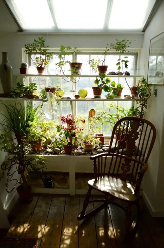 DIY Ιδέες Βότανο κήπων Παραθύρων για την κουζίνα σας10