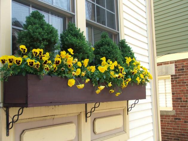 Ιδέες με ζαρτινιέρες λουλουδιών για τα παράθυρα σας10