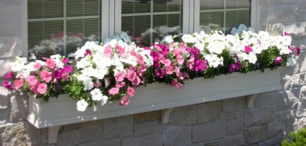 Ιδέες με ζαρτινιέρες λουλουδιών για τα παράθυρα σας11