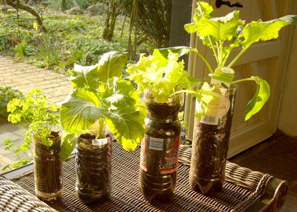 DIY ιδέες γλάστρας από οικιακά είδη15