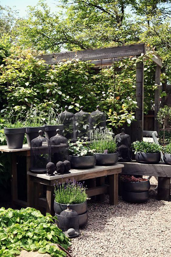 θεραπευτική γωνιά με φυτά15