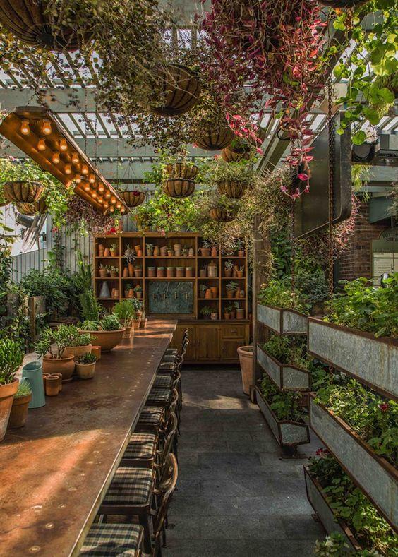 θεραπευτική γωνιά με φυτά18
