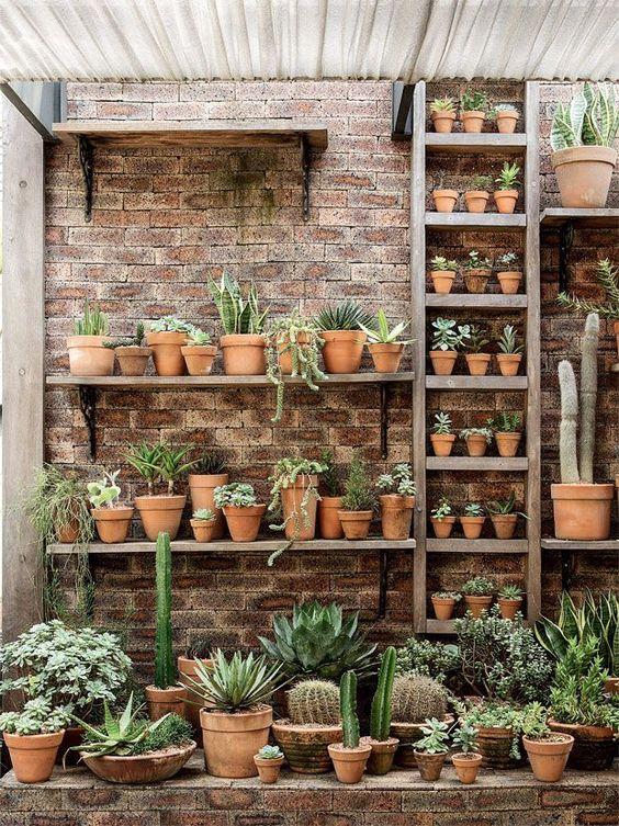 θεραπευτική γωνιά με φυτά22