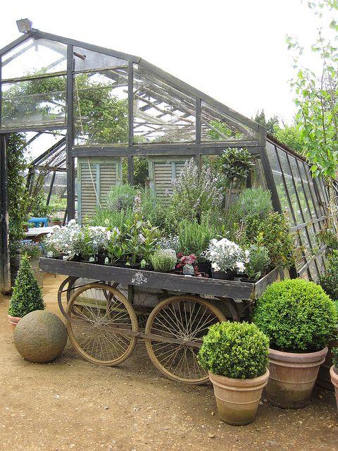 θεραπευτική γωνιά με φυτά6