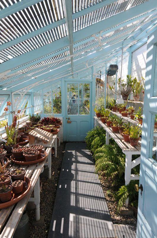 θεραπευτική γωνιά με φυτά9