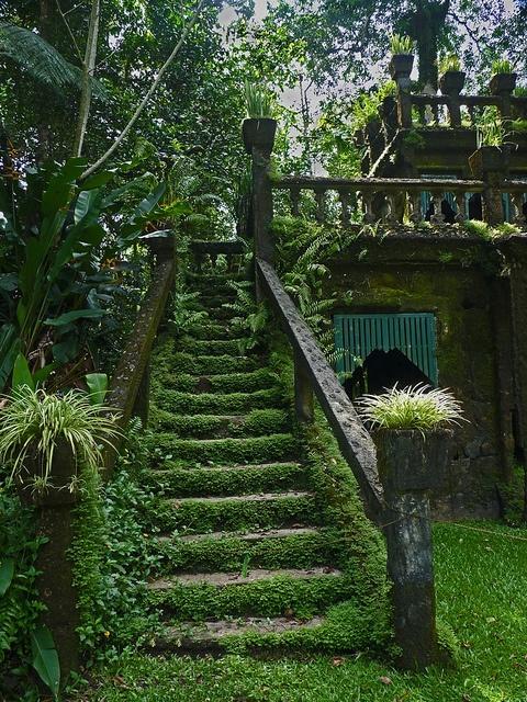 Μυστικοί Κήποι6