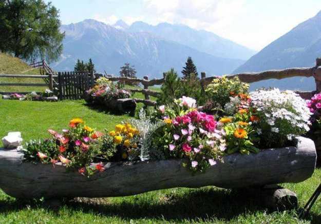 κούτσουρα και κορμούς σε όμορφές DIY γλάστρες10