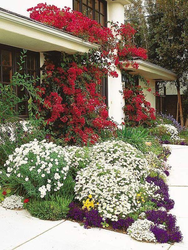 Άνοιξη, η τέλεια εποχή για να φυτέψετε λουλούδια13