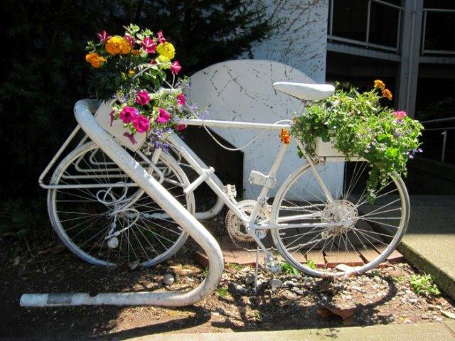διάκοαμηση κήπου με ποδήλατα9
