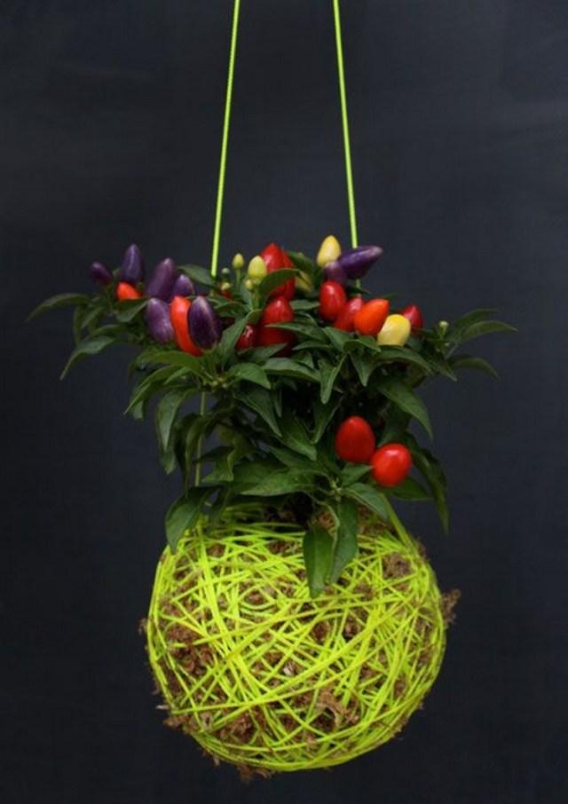 DIY κρεμαστές γλάστρες10