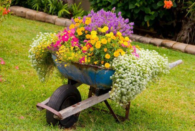 Καλιτεχνικές ιδέες διακόσμησης κήπου3