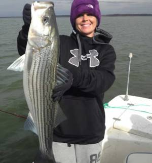 Striper Cat Guide Service