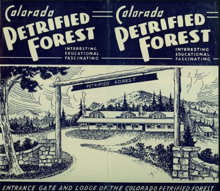 Front cover of Colorado Petrified Forest brochure
