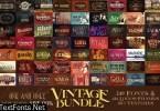 Vintage Bundle 249 Fonts & 414 Logos 3264710