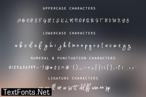 Adventure Dreamer Family Font