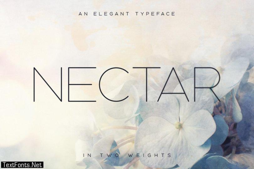 Nectar Typeface 1148535