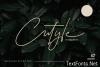 Cutyle Script Font