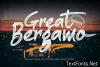 Great Bergamo Font