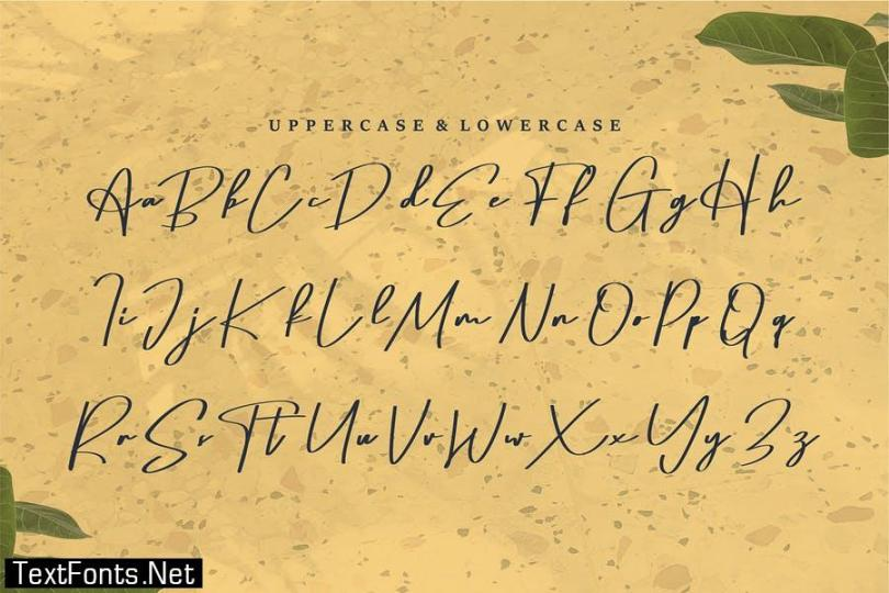 Alertho | A Beauty Script Font
