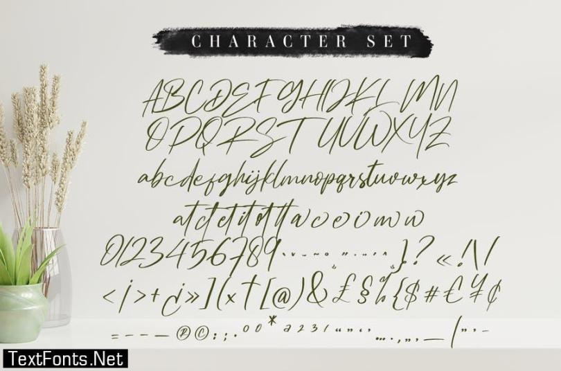 Ambitive Font