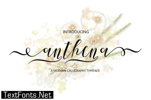 Anthena Script Font