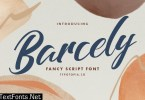 Barcely Beautiful Script Typeface