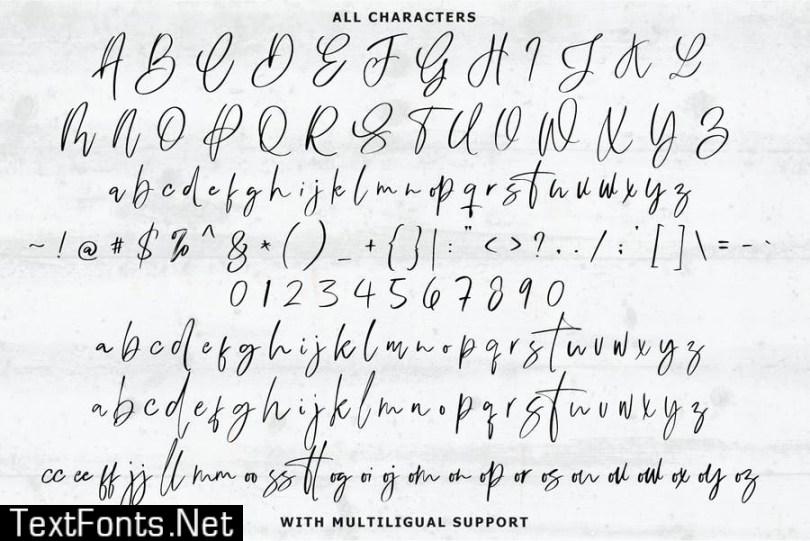 Dublishine Signature Font