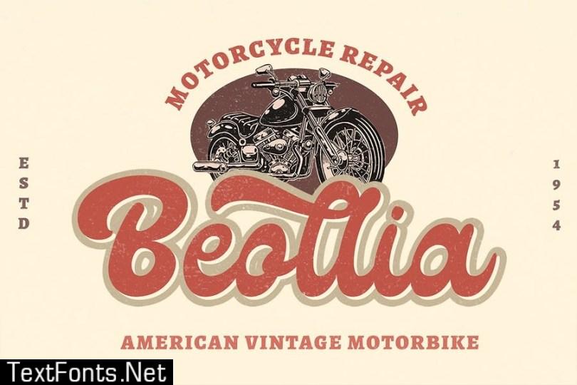 Lico - Vintage Retro Display Font