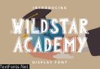 Wildstar Academy Font