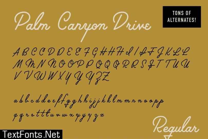 Palm Canyon Drive   Script & Glyphs