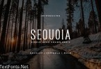 Sequoia - Hand Drawn Font 2890203