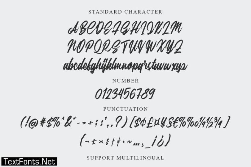 Silfa - Script Font