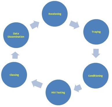 Standardized Process for HVI Testing