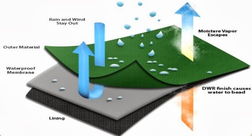 Mechanism of Water Repellency