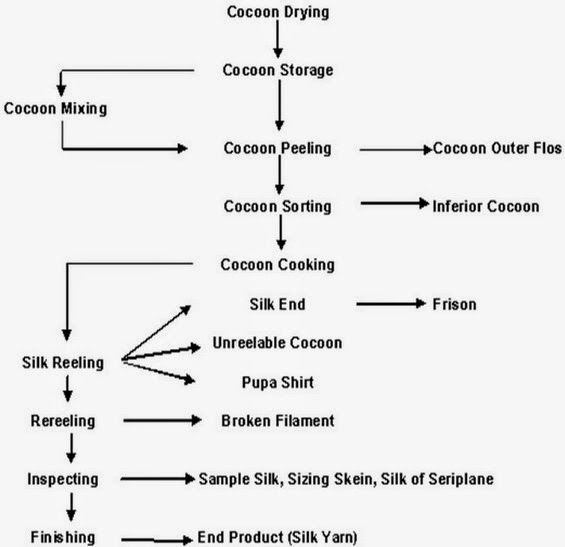 The technological process of silk fibres reeling