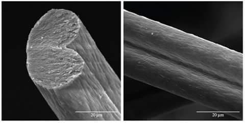 Cross – Sectional Shape of acrylic fiber