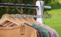 Promising Strategies in Sustainable Textiles and Clothing