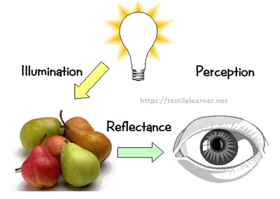 perception of color theory