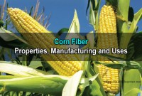 Corn Fiber: Properties, Manufacturing, Benefits and Uses