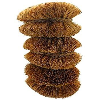 Organic Fiber Brush