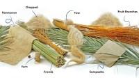 Date Palm Fiber: Properties, Chemical Treatments & Applications
