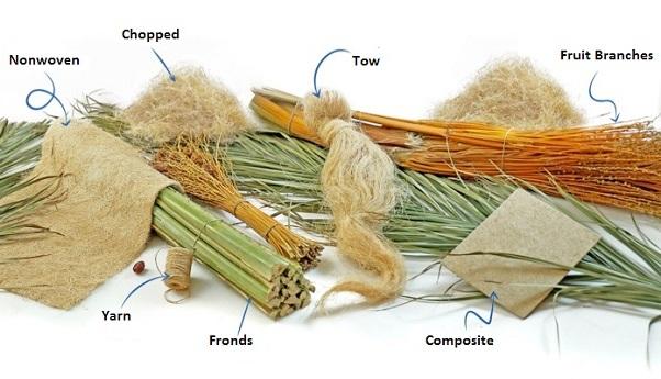 Uses of Date Palm Fibers