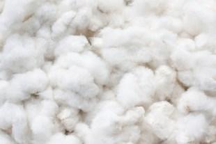 Electrical Properties of Textile Fiber