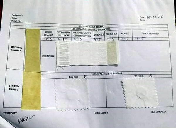 sample 6 report