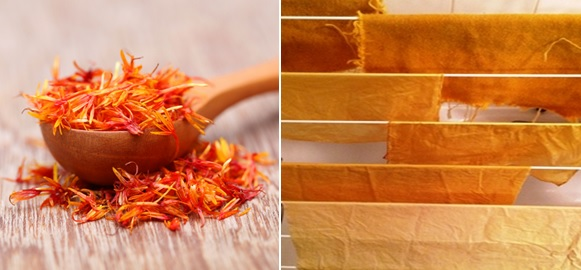 Safflower and dyed fabric